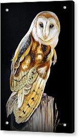 Wisdom Acrylic Print