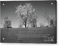Acrylic Print featuring the photograph Wise Words by Craig Leaper