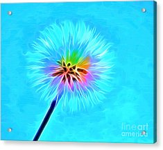 Wish From The Soul Acrylic Print