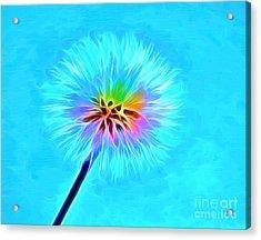 Wish From The Soul Acrylic Print by Krissy Katsimbras