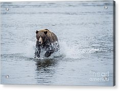 Acrylic Print featuring the photograph Wish Me Luck by Sandra Bronstein