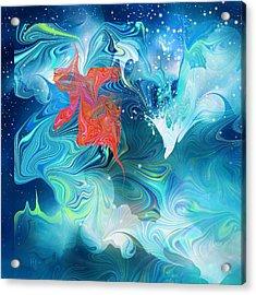 Wish On A Star Acrylic Print by Rachel Christine Nowicki