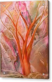 Wishing Tree Acrylic Print by John Vandebrooke