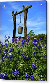 Wishing Well Acrylic Print