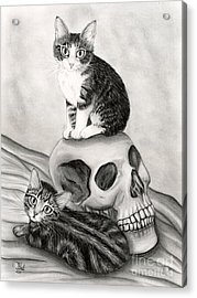 Witch's Kittens Acrylic Print