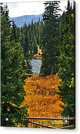 With A View Acrylic Print
