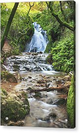 With All I Have Acrylic Print by Laurie Search