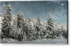 With Love - Winter  Acrylic Print by Beve Brown-Clark Photography