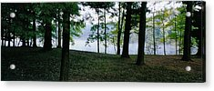 Within Sight Of A Lake Acrylic Print by Tom Hefko