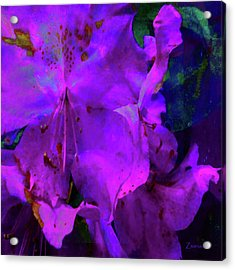 Woke Gorgeous Acrylic Print