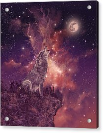 Wolf And Sky Red Acrylic Print