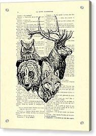 Wolf, Bear, Deer, Owl Wildlife Animals Black And White Acrylic Print