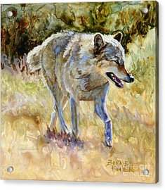 Acrylic Print featuring the painting Wolf by Bonnie Rinier