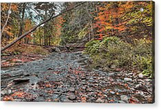 Wolf Creek At Letchworth State Park, Ny Acrylic Print by Joe Granita