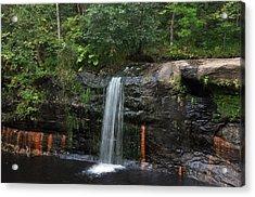 Wolf Creek Falls Acrylic Print by John Ricker