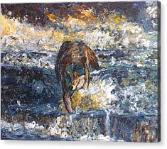 Acrylic Print featuring the painting Wolf Crossing The River by Koro Arandia