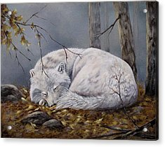 Acrylic Print featuring the painting Wolf Dreams by Mary McCullah
