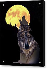 Wolf Howling At The Moon Acrylic Print