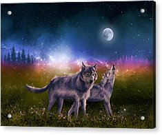 Wolf In The Moonlight Acrylic Print