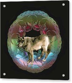 Wolf Acrylic Print by Julie Grace