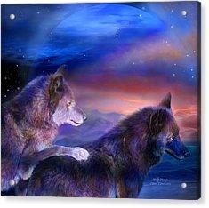 Wolf Mates Acrylic Print by Carol Cavalaris