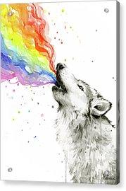 Wolf Rainbow Watercolor Acrylic Print by Olga Shvartsur