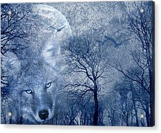 Wolf Acrylic Print by Svetlana Sewell
