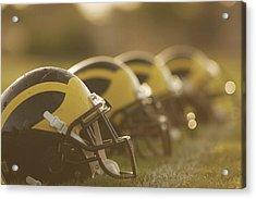 Wolverine Helmets Sparkling In Dawn Sunlight Acrylic Print
