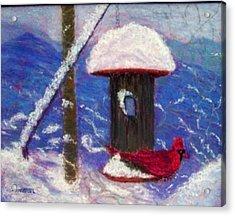 Wonder Of Winter Acrylic Print by Sandy Hemmer