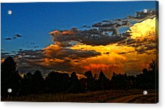 Acrylic Print featuring the photograph Wonder Walk by Eric Dee