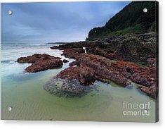 Wonderful Coastline Acrylic Print