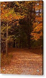Wonderful Fall Colors Acrylic Print by Robert  Torkomian