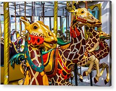 Wonderful Giraffe Ride Acrylic Print