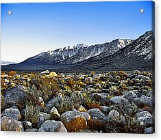 Acrylic Print featuring the painting Wonoga Peak by Larry Darnell
