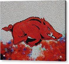 Woo Pig Sooie 2 Acrylic Print by Belinda Nagy