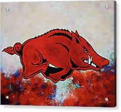 Woo Pig Sooie Acrylic Print by Belinda Nagy