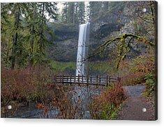 Wood Bridge On Hiking Trail At Silver Falls State Park Acrylic Print