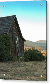 Wood House Acrylic Print
