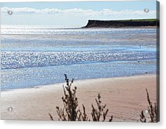 Acrylic Print featuring the photograph Wood Islands Beach by Kim Prowse