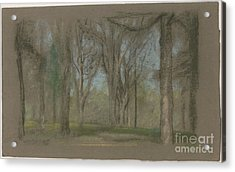 Wood Scene Acrylic Print by MotionAge Designs