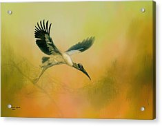 Wood Stork Encounter Acrylic Print by Marvin Spates