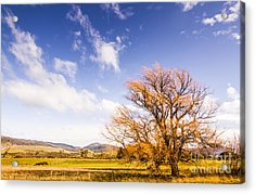 Woodbury In Fall Acrylic Print by Jorgo Photography - Wall Art Gallery