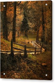 Wooded Path Acrylic Print by Jessica Jenney