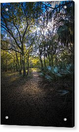 Wooded Path Acrylic Print by Marvin Spates