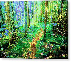 Wooded Trail Acrylic Print by Dave Martsolf