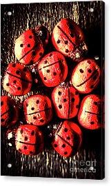 Wooden Beetle Bugs Acrylic Print