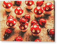 Wooden Bugs And Plastic Toadstools Acrylic Print