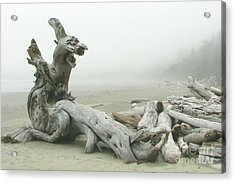 Wooden Dragon Acrylic Print