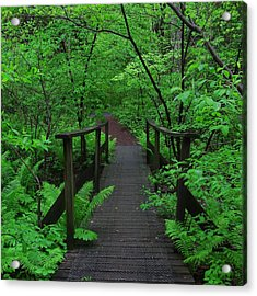 Wooden Foot Bridge Acrylic Print