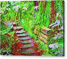 Acrylic Print featuring the digital art Wooden Steps Through The Forest - Tamalpais California by Joel Bruce Wallach